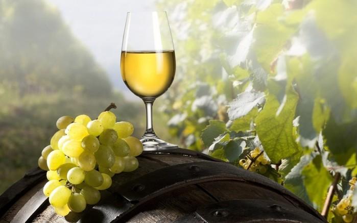 Пробуем молдавские вина из край виноградарства!
