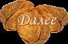 грец орех 1 (100x64, 17Kb)