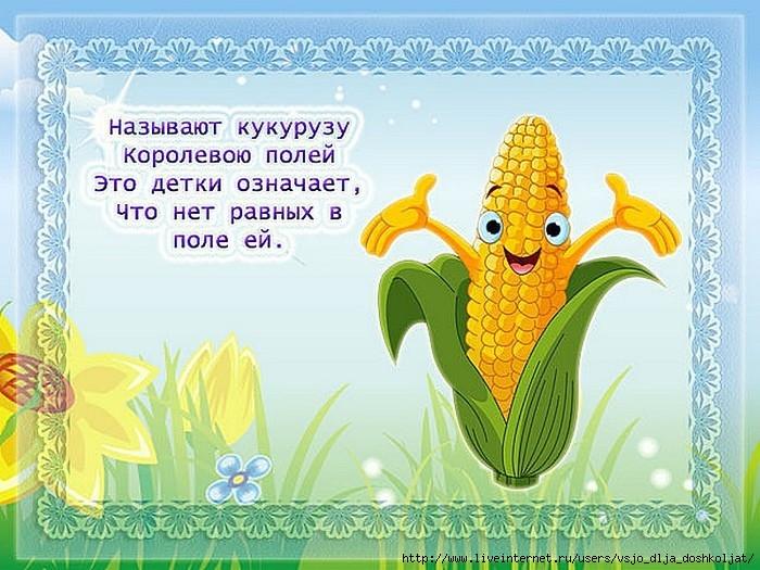 Стих о кукурузе для детей