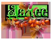 4897960_0_10ef54_62c99d45_orig (170x133, 48Kb)