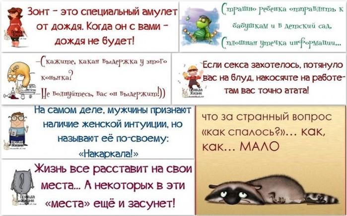 5672049_1377658401_novayapapka22 (700x436, 94Kb)