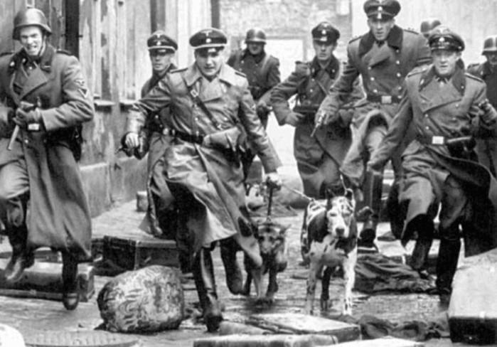 Почему на Нюрнбергском процессе не признали гестапо и СС преступными организациями