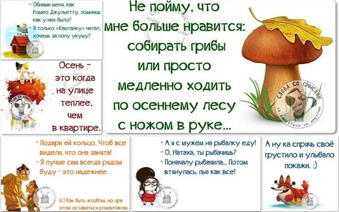 5672049_1443384066_frazki (700x437, 97Kb)