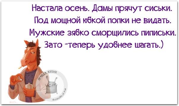 5672049_1443384062_frazki11 (604x356, 42Kb)
