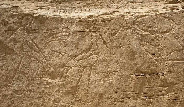 Найдены самые древние египетские иероглифы