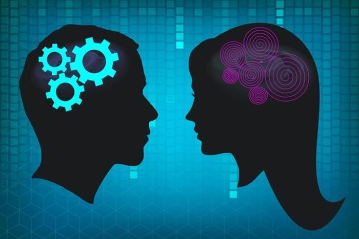Наконец-то, названы ГЛАВНЫЕ отличия женского мозга от мужского
