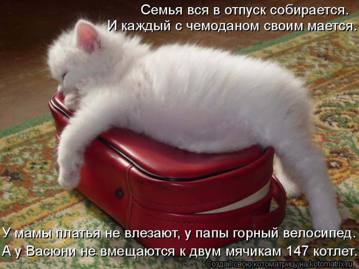 kotomatritsa_m (700x524, 364Kb)