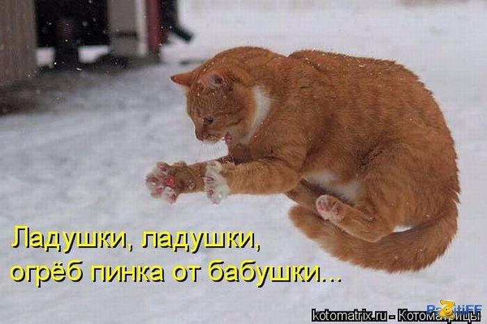 1285505135_kotomatrix_28 (700x466, 218Kb)