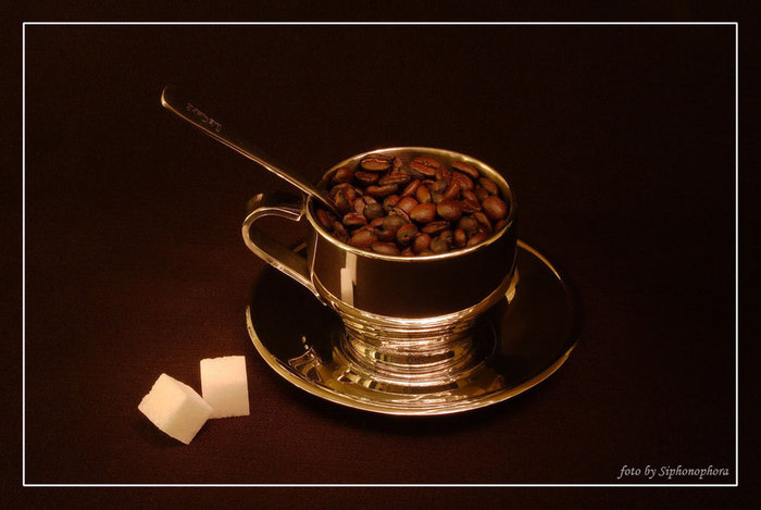 a_cup_of_coffee_by_shinshilla1996-d3fbpxf (700x469, 52Kb)