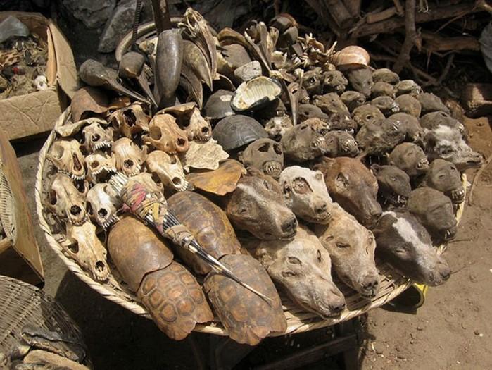 Африканский рынок вуду в Того