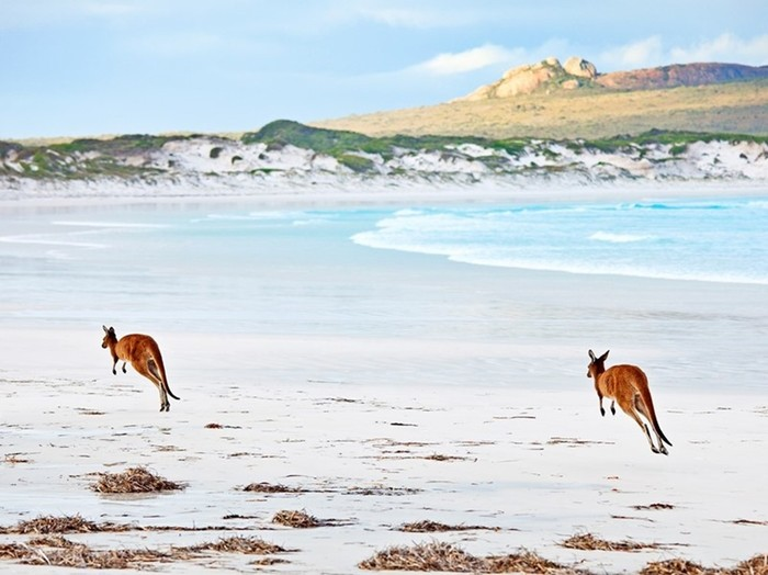 Захватывающая красота Австралии