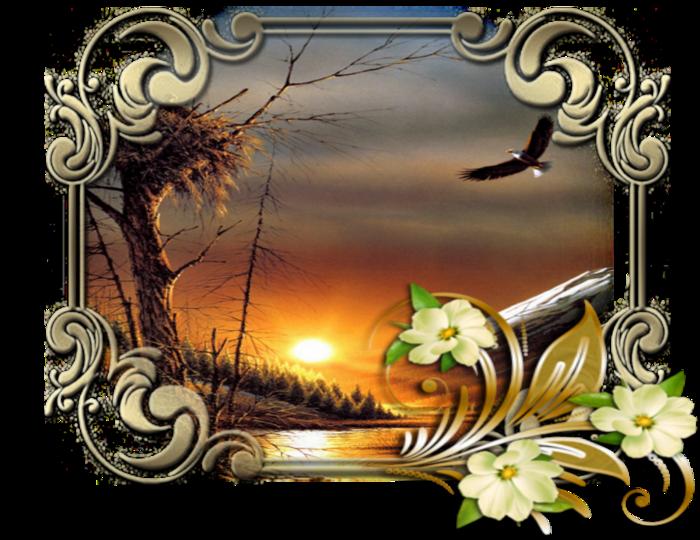 5252596_ramochka_rassvet_2 (700x540, 663Kb)