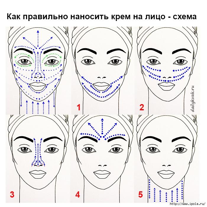 "alt=""Как правильно наносить крем на лицо?""/2835299_Kak_pravilno_nanosit_krem_na_lico_shema (700x700, 366Kb)"