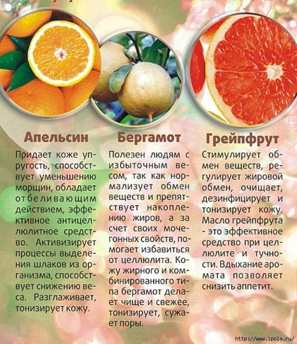 "alt=""Польза эфирных масел для здоровья""/2835299_POLZA_EFIRNIH_MASEL (604x700, 378Kb)"