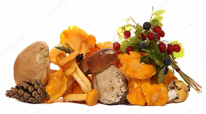 depositphotos_78610464-stock-photo-mushrooms-berries-pine-cones-strawberries (700x387, 244Kb)