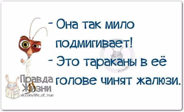 1412612325_frazki-17 (604x367, 126Kb)