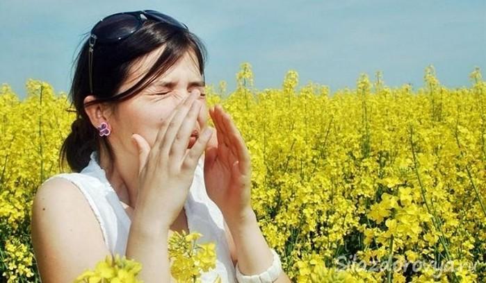 Медовый эликсир витаминный