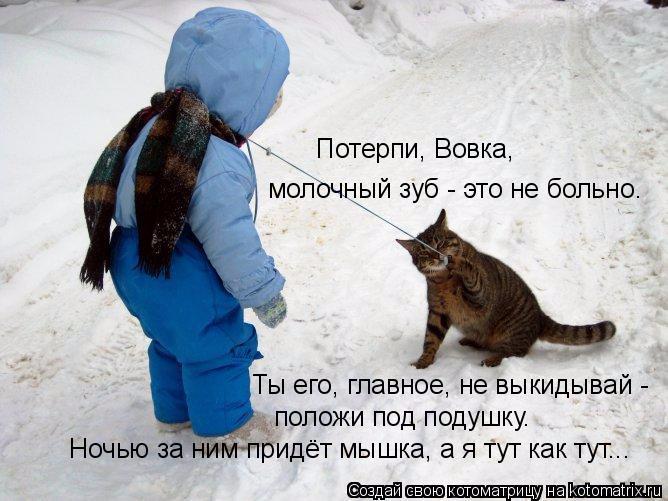 kotomatritsa_8k (668x501, 266Kb)