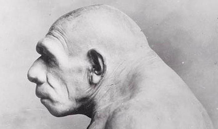 Главные загадки неандертальцев