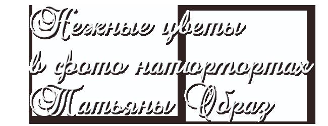 Без-имени-1 (650x250, 100Kb)