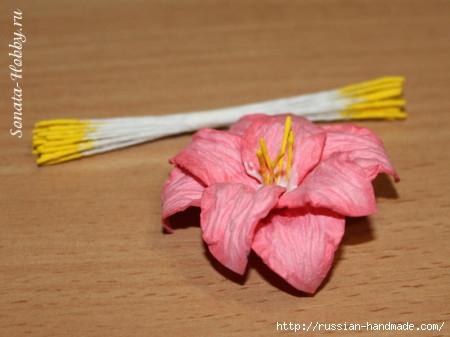 Бумагопластика. Цветы из акварельной бумаги (18) (450x337, 86Kb)