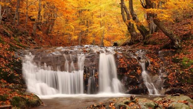 osen_les_listopad_vodopad_kaskady_kamni_zhurchanie_46660_602x339 (620x349, 300Kb)