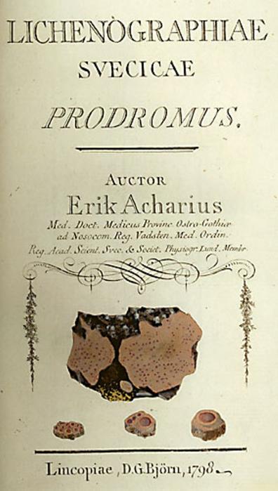 Erik_Acharius_(drawing_2) (396x700, 236Kb)