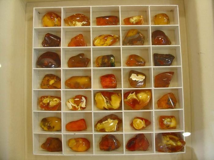 музей янтаря калининград фото 6 (700x525, 340Kb)