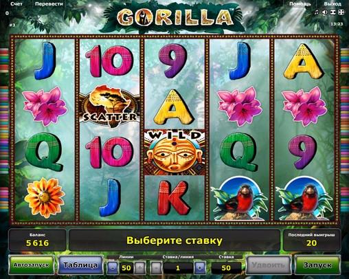 2. Gorilla (508x406, 306Kb)