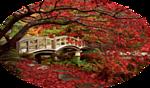 осень мост мал (150x88, 34Kb)