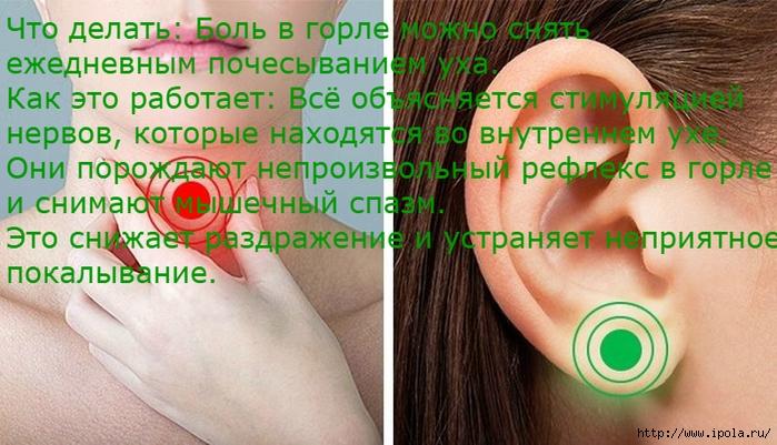 "alt=""Массаж этих 9 точек избавит от неприятных ощущений""/2835299_Massaj_etih_9_tochek_izbavit_ot_nepriyatnih_oshyshenii1 (700x401, 267Kb)"