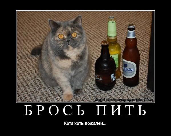 в сочи от закодироваться алкоголя-19