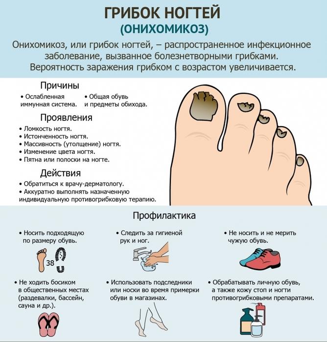 Лечение грибка ногтей ветеринарными препаратами