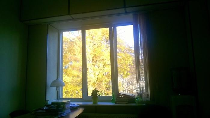1161737_Window (700x393, 71Kb)