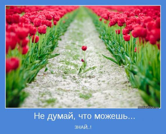 1377199119_www.radionetplus.ru-11 (570x462, 226Kb)
