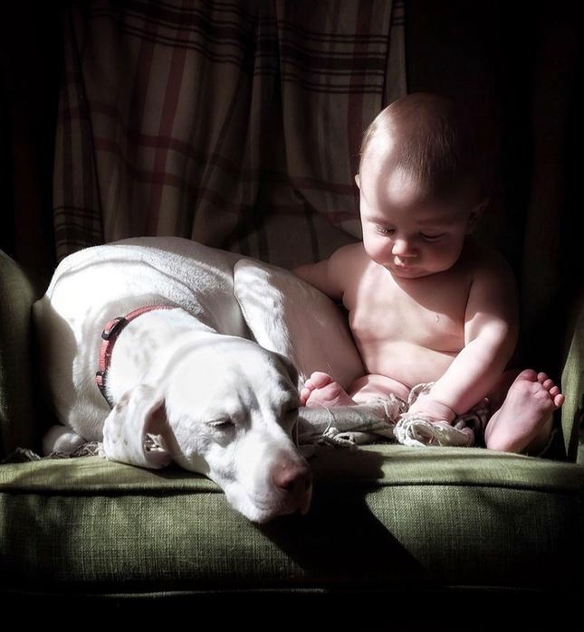 дети и животные фото 1 (645x700, 324Kb)
