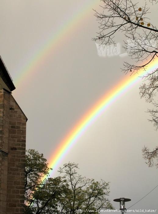 Regenbogen2wz (518x700, 225Kb)