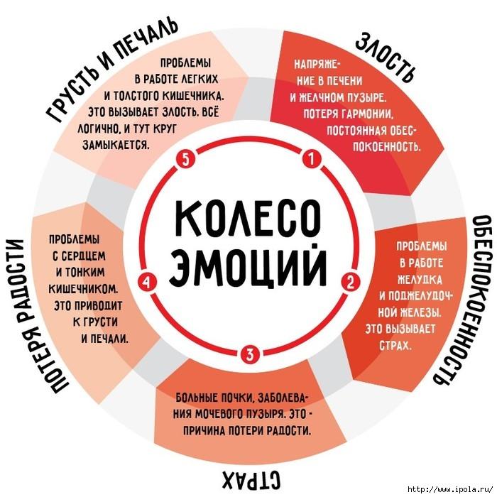 """alt=""""Как влияют наши эмоции на здоровье?""""/2835299_KAK_SVYaZANI_NAShI_EMOCII_SO_ZDOROVEM (700x700, 233Kb)"""