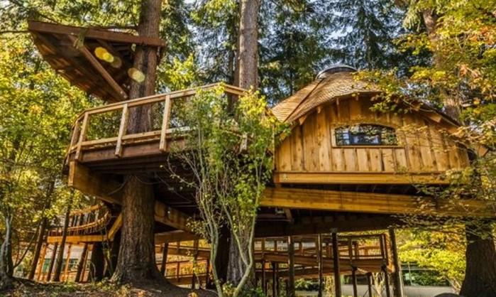 Новый офис Microsoft посреди леса