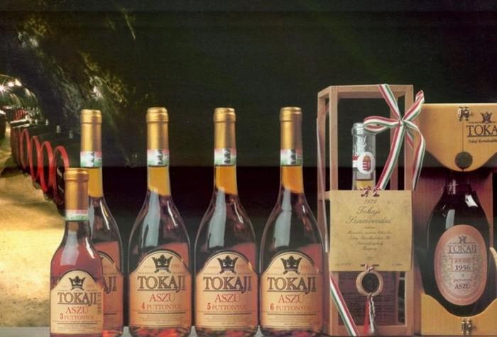 Токай — король вин и вино королей (статья)