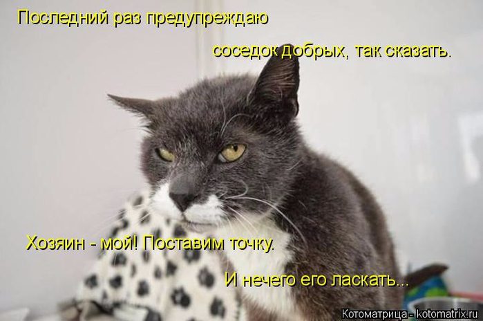 kotomatritsa_7M (700x464, 236Kb)