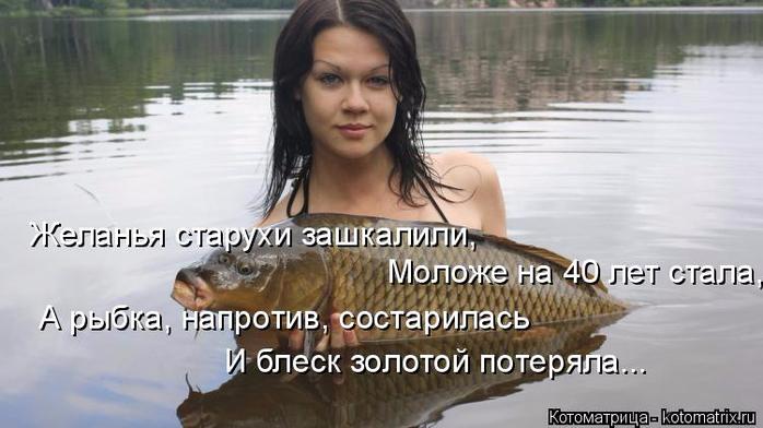 kotomatritsa_jE (1) (700x392, 243Kb)