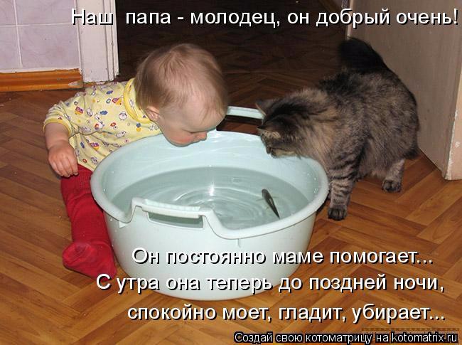 kotomatritsa_P (650x485, 254Kb)