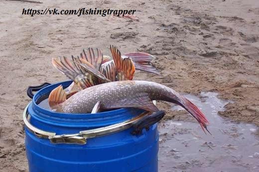 водоемы сибири для рыбалки