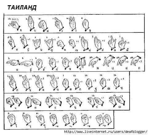 ручная азбука глухих таиланд (484x441, 131Kb)