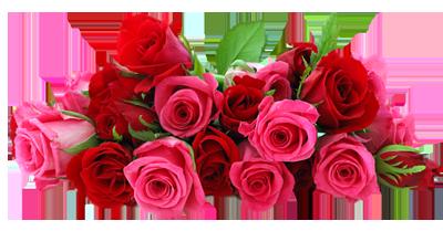 clipart-rozovaja-roza (400x209, 126Kb)