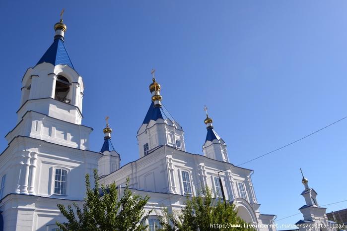 9 августа 2016 Церковь, цветы 016 (700x466, 223Kb)