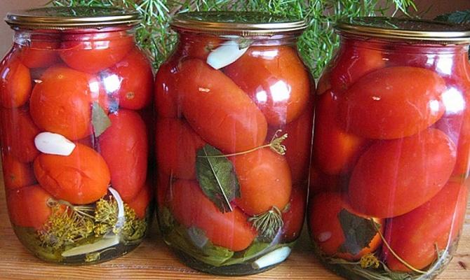 помидоры рецепты с фото
