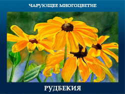 5107871_RYDBEKIYa (250x188, 100Kb)