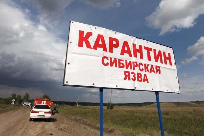 Эпидемия сибирской язвы в Свердловске в 1979 году: главные вопросы